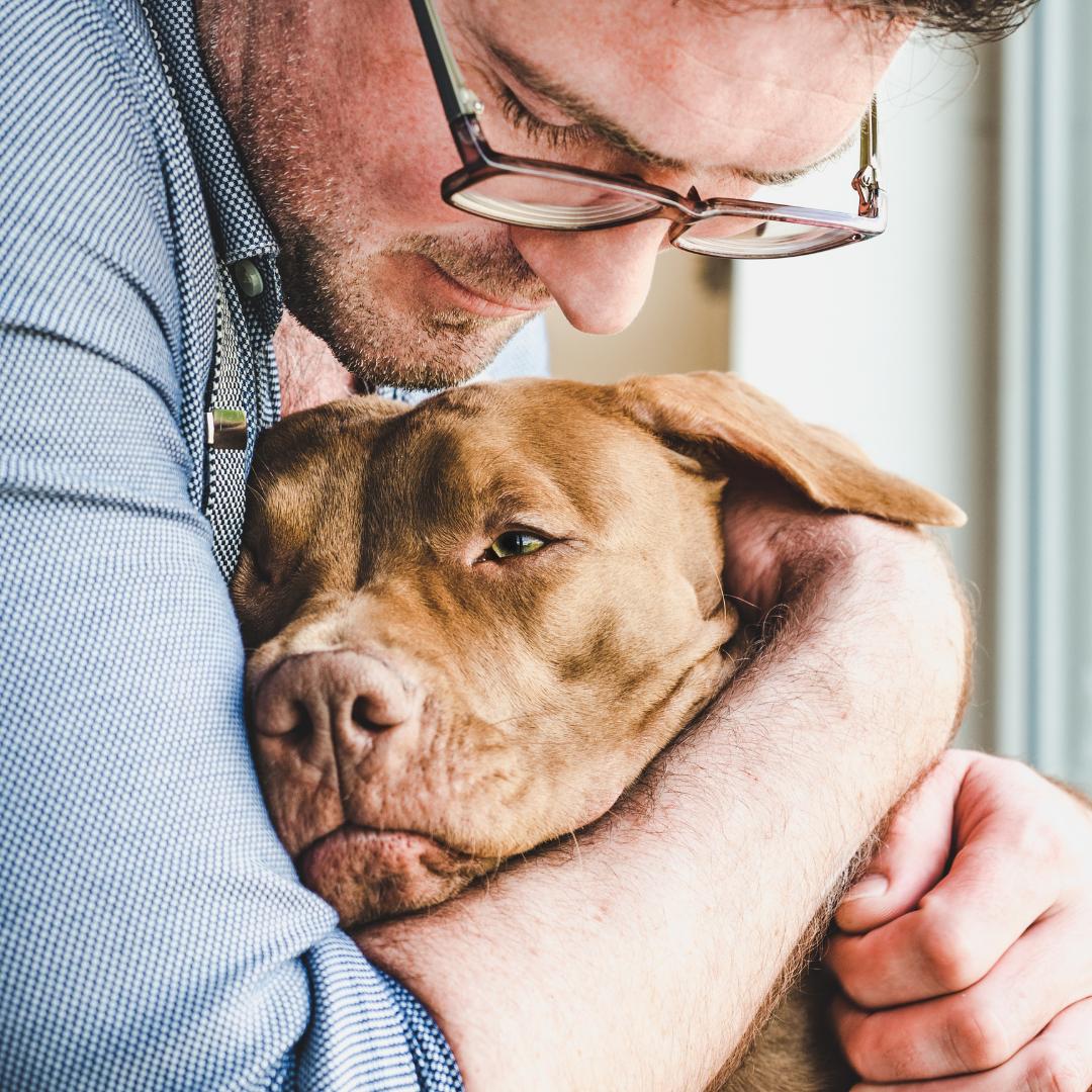cane assicurato protetto dal suo padrone grazie alla polizza ConTe Cane e Gatto